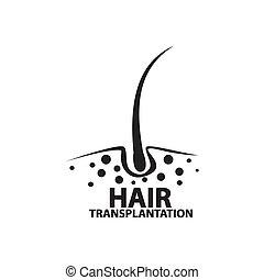 cheveux, détail, illustration