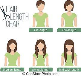 cheveux, devant, longueur, diagramme, vue