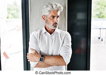 cheveux, gris, homme affaires, mûrir, bureau.