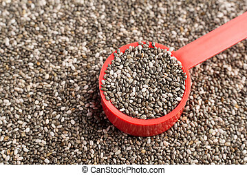 Chia seeds in a red measuring spoon