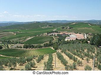 Chianti in Tuscany