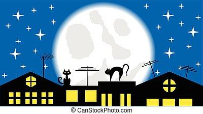 chiaro di luna, gatti, tetto, notte