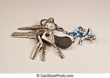 chiavi, lucertole, keychain