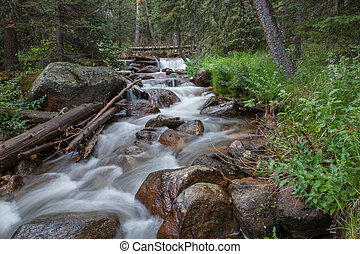 Chicago Creek Cascading through the Forest - Before you can ...
