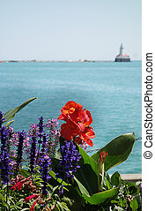 Chicago flowers on Navy Pier