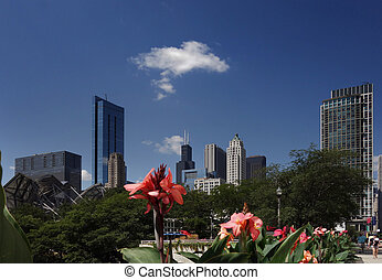 Chicago skyline flowers