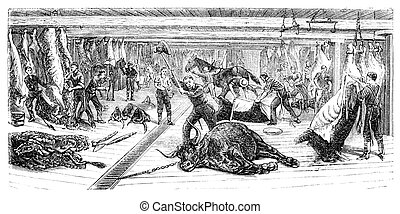 """A Slaughterhouse in Chicago. Illustration originally published in Ernst von Hesse-Wartegg's """"Nord Amerika"""", swedish edition published in 1880. The image is currently in Public domain by virtue of age."""