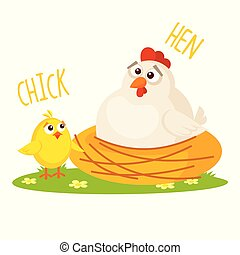 Chick and Hen Vector illustration isolated