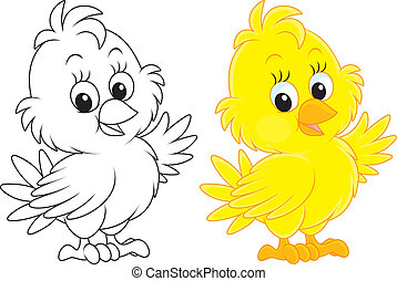 Chick - Little yellow chick, color and black-and-white...