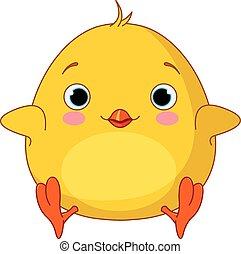 chick, gul