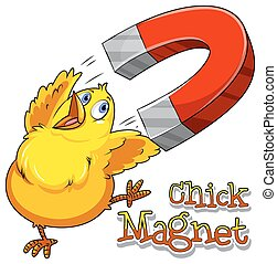 Chick magnet - English saying chick magnet with picture