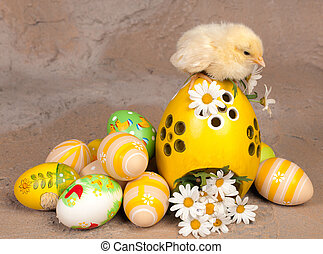 Chick on easter eggs