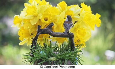 chickadee, Easter eggs, daffodils - chickadee and Easter...
