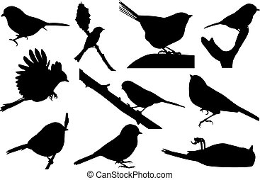Chickadee Silhouette vector illustration