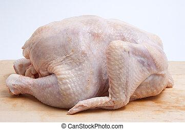 chicken-broiler - Fresh hen / a chicken-broiler on a light...