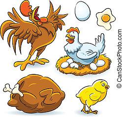 Chicken Collection - cartoon illustration of chicken set...