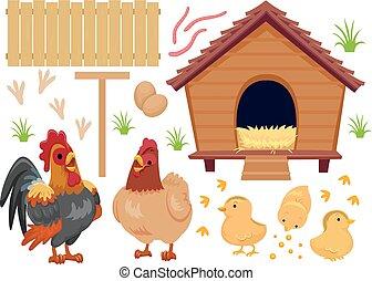 Chicken Coop Chicks Elements Illustration