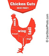 Chicken cuts infographic set of meat parts, vector