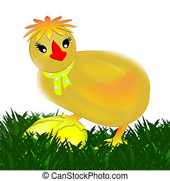Chicken. Egg. - Chicken on a white background