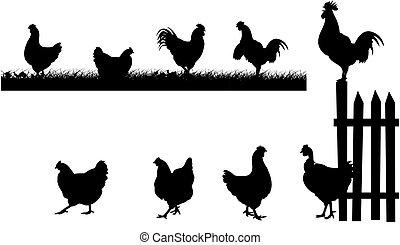 chicken, hen, cock - silhouettes