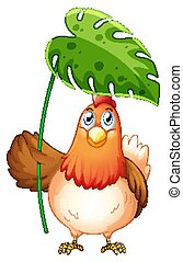 Chicken holding big leaf on white background