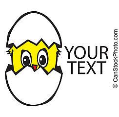 Chicken in the broken egg - New born chicken in egg. Vector...