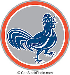 Chicken Rooster Walking Circle Retro