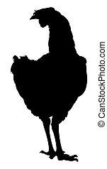 chicken, silhouette