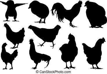 Chicken Silhouette vector illustration