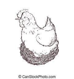 chicken sketch animal farm icon. Vector graphic
