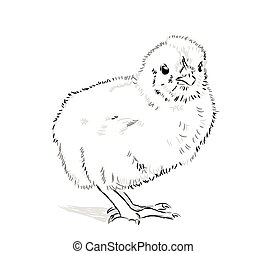 Chicken Vector black and white