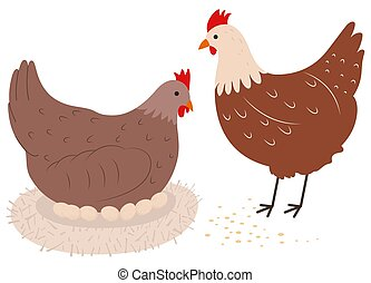 Chickens flat vector illustration