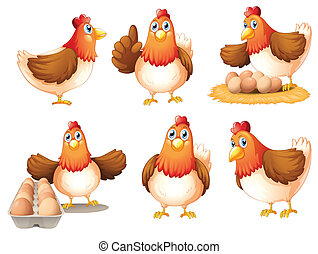 Chickens with eggs - Illustration of the chickens with eggs...