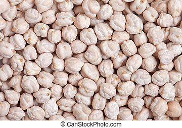 Chickpea Bean