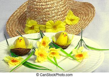 chicks & daisies