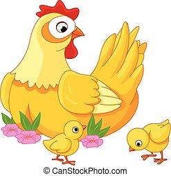 chicks, høne