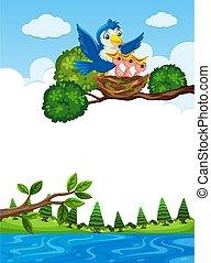 Chicks in nest on tree branch