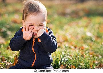 chico que sienta, en la hierba, y, hamming