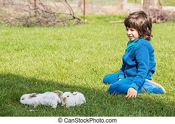 chico que sienta, en, pasto o césped, con, poco, conejos