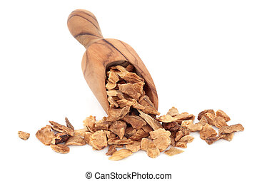 Chicory Root - Chicory root herb in an olive wood scoop over...