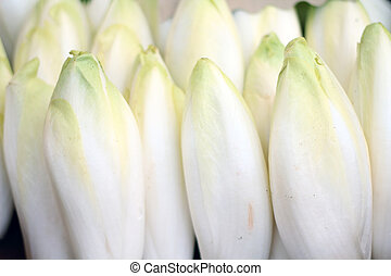 chicory - rows of chicory on sale in a market