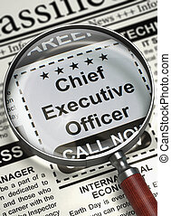Chief Executive Officer Hiring Now. 3D.