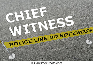 Chief Witness concept