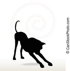 chien, étendue, silhouette, pose