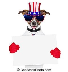 chien, américain