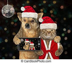 chien, année, nouveau, chat, fête