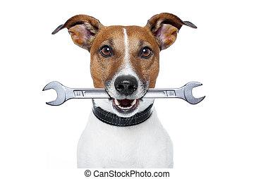 chien, artisan
