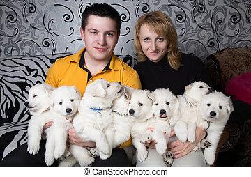 chien, breeders