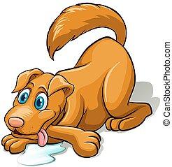 chien brun
