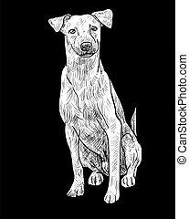 chien brun, séance